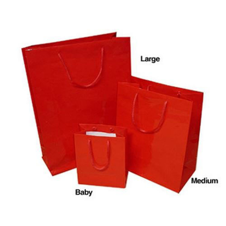 Picture of Coloured Laminated Paper Bags with Rope Handle - Medium